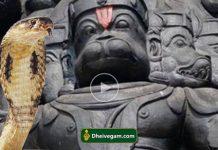 God Hanuman and Snake
