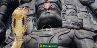 God Hanuman and Snake