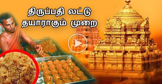 Thirupathi laddu