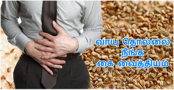 Vaayu Thollai Neenga