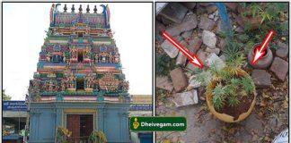 kanja in temple