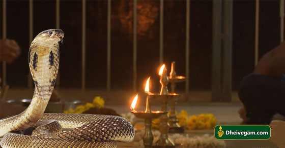 snake in pooja