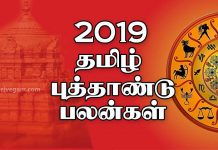 Vigari tamil new year rasi palan 2019