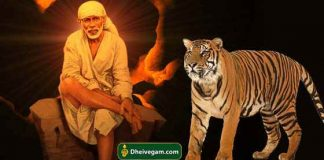 Sai baba with tiger