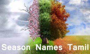 season names in Tamil calendar