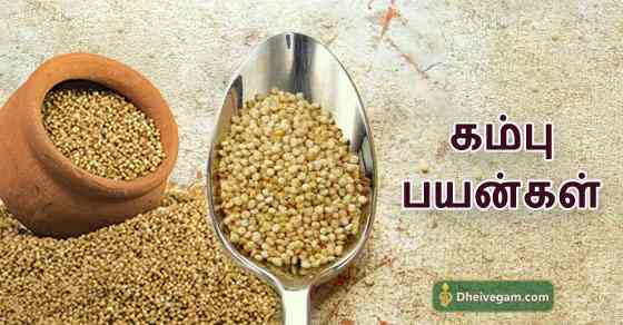 Kambu bnefits in Tamil