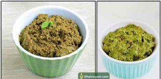 Pudhina Thogayal recipe in Tamil
