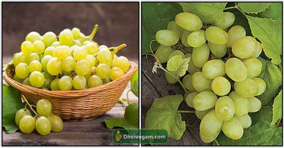 Benefits of grapes in Tamil