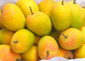 Mango benefits in Tamil