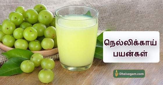 Nellikai benefits in tamil