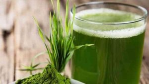 Arugampul juice benfits Tamil