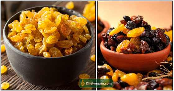 Dry Grapes benefits in Tamil