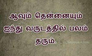 Tamil Palamoligal