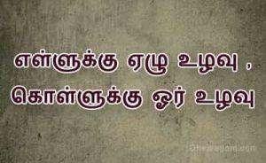 தமழ பழமழகள Tamil Proverbs In Tamil Pazhamozhi