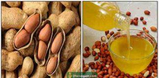 ground-nut-oil