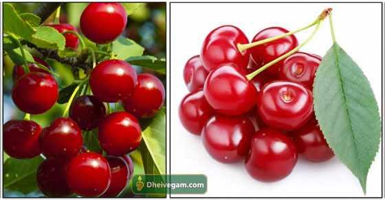 cheery-fruit