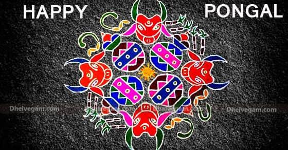 Pongal Kolam design