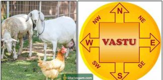 vastu-for-animals