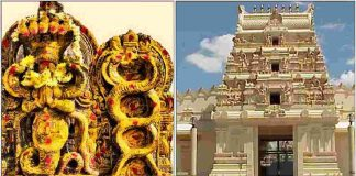 nagaraja-swami-temple