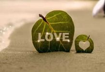 Love kavithai