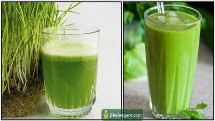 Arugampul-juice-benefits-tamil-1