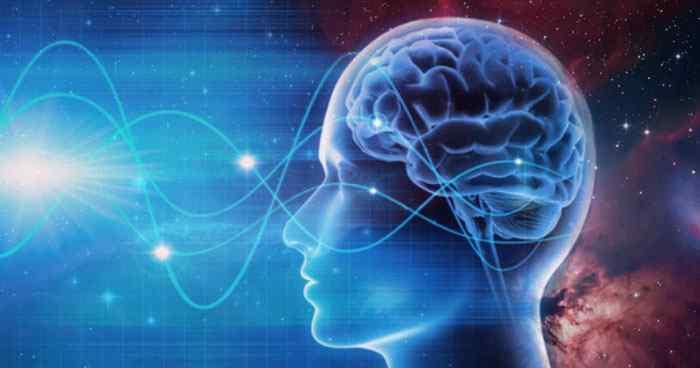 brainwaves moolai