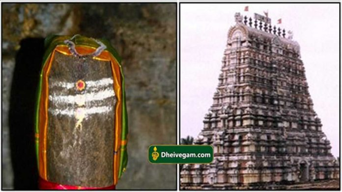 Aavidiyar-temple2