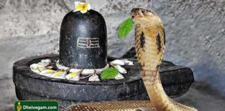 Snake-with-lingam