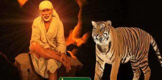 sai-baba-with-tiger-1