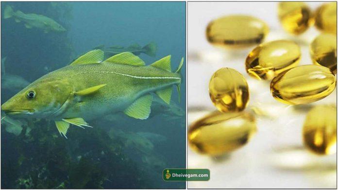 fish-liver-oil