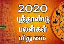 Mithunam 2020 new year rasi palan
