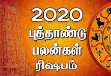 2020 new year rasi palan Rishabam