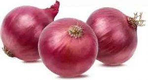 If you want to get rid of joint pain to lung mucus, add all this with onion