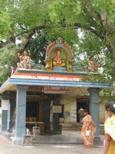 Vannimara-pillaiyar1