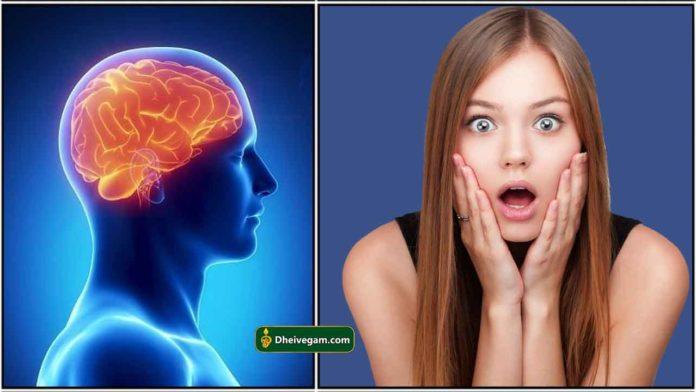 brain-image