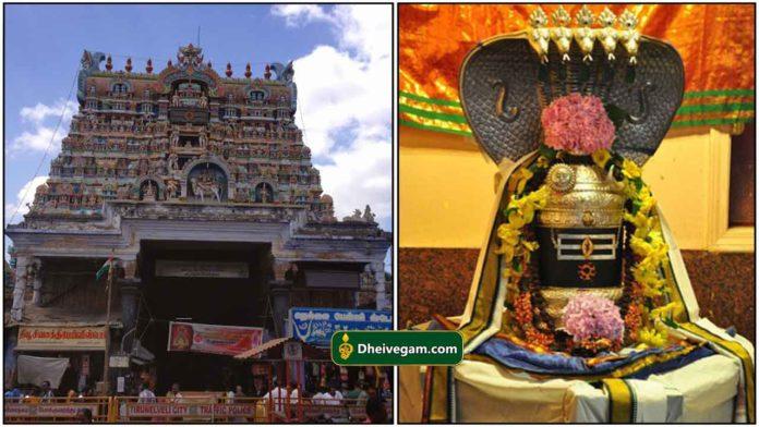 nellaiyappar-temple3