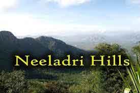 tirupathi-neeladri