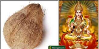 coconut-lakshmi