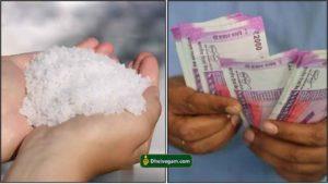 salt cash