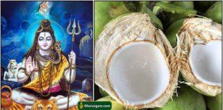 sivan-coconut