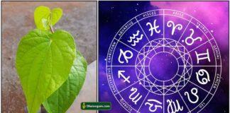 vetrilai-astrology