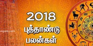 2018-new-year-palan