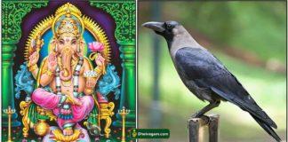 crow-vinayagar