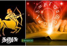 dhanusu-lal-kitab