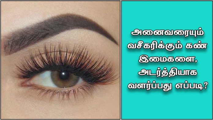 eyelid2