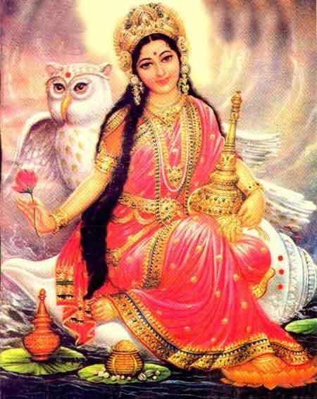 owl-lakshmi