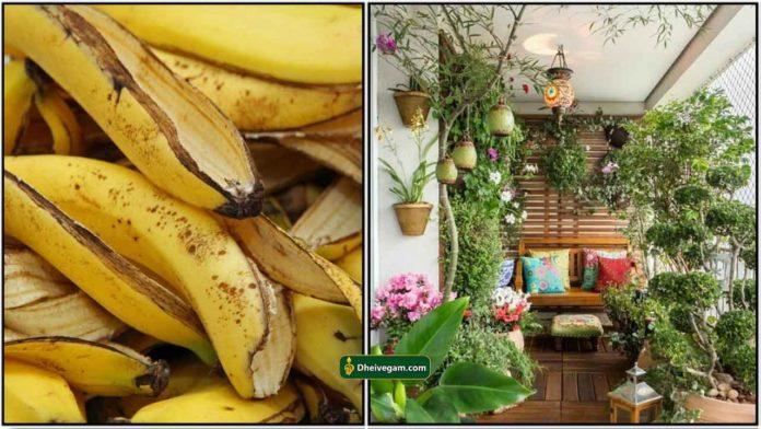 banana-skin1