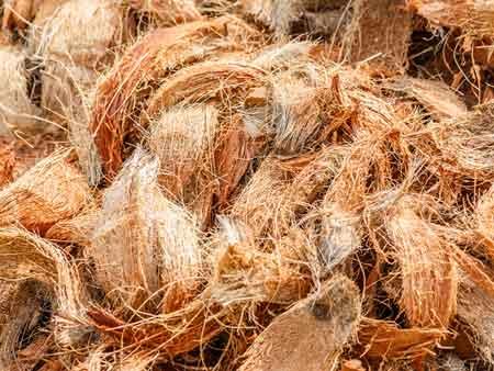 coconut-fiber