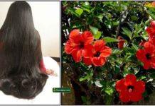 hair-growth-sembaruthi