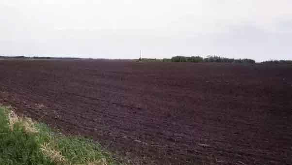 black-soil-land
